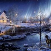 Weihnachten_2009
